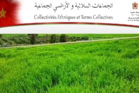 المرسوم التطبيقي لأحكام القانون رقم 62.17 بشأن الوصاية الإدارية على الجماعات السلالية وتدبير أملاكها