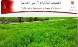 مشروع مرسوم بتطبيق القانون رقم62.17 بشأن الوصاية الإدارية على الجماعات السلالية بتدبير أملاكها